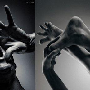 chiaroscuro x Vadim Stein